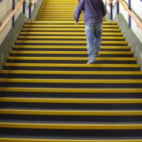 Eli-Safe Heavy Duty GRP Step Covers